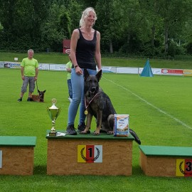 Margit Kemmer mit ihrem Josef von der Siegerstrasse Sieger beim ÖHV Bundesmeisterschaft in der IPO2-05.06.2016
