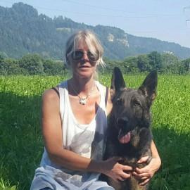 Gratulation an Margit Kemmer erste IPO 3 A:90-B:88-C:95 mit ihren Josef von der Siegerstrasse. Bin immer stolz solche Hundeführer in meiner Zucht zu haben