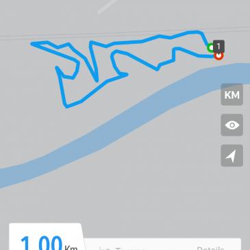Kira von der Siegerstrasse beim Fährtentraining-Skizze 18.08.2018_ mit fast  1600 Schritten