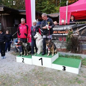 Salzburg-Sieger und 8. Peter Stöckl Gedächtnisturnier   FH2     2.10.2018 Mit meiner Zuchthündin Kira von der Siegerstrasse Rang 2